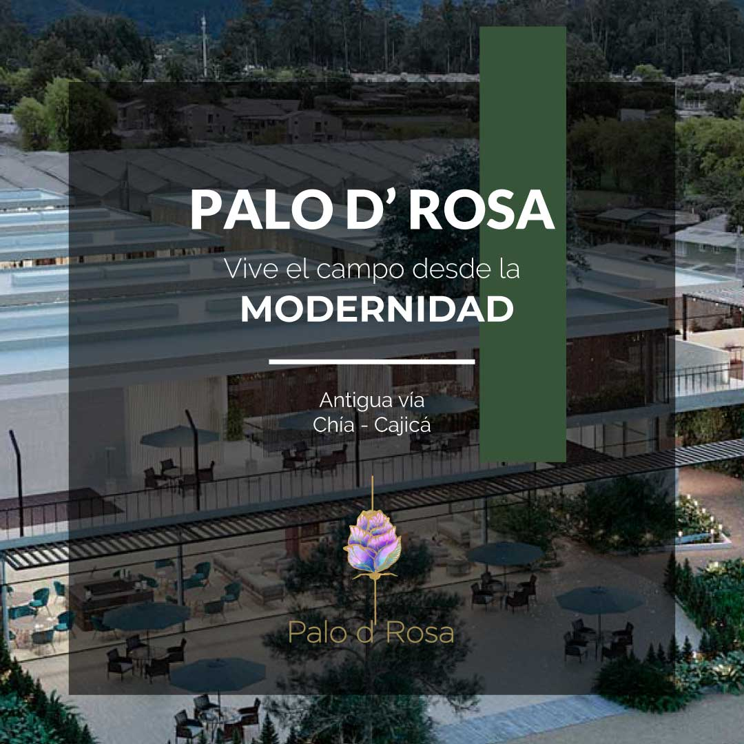 Box-Palo-Rosa-13