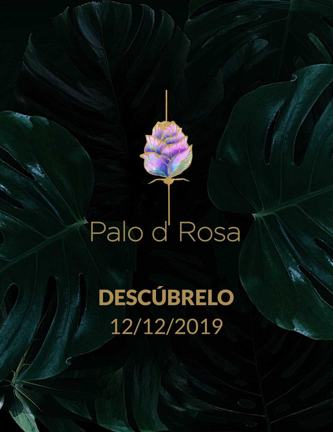 BG-Palo-Rosa-movil-1